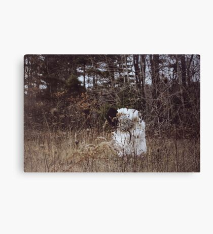Wolf in Sheep's Skin Canvas Print