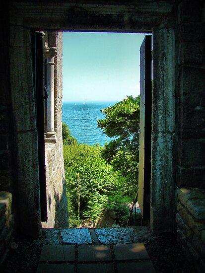 The Door to the Sea by Jamie Lee