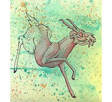 The Magical Vanishing Deer Photographic Print