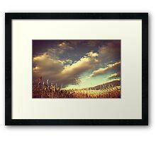 Gold Light Framed Print