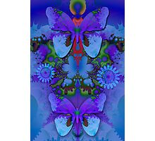 Butterflies in a Blue and Purple world Photographic Print