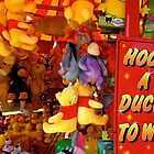 Hook A Duck! by John Hooton