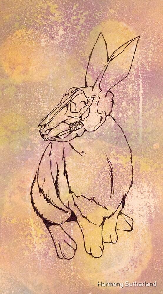 Vanishing Rabbit by Harmony Sutherland
