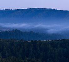 Land Spray in Russian Ridge by Matt Tilghman