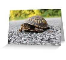 Mr. Turtle Reptile Greeting Card