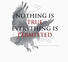 Nothing is True, Everything is Permitted by rezoner