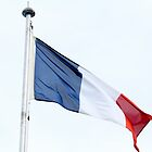 French Flag by rezoner