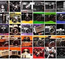 Camera Collage I by wayneyoungphoto