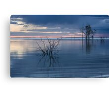 Blue Lake Menindee Canvas Print