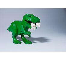 Beware of dinosaurs Photographic Print