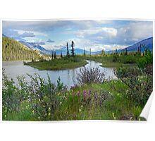 Athabasca River, Alberta Poster