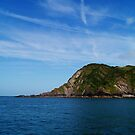 View from Ilfracombe Harbour. by littleredbird