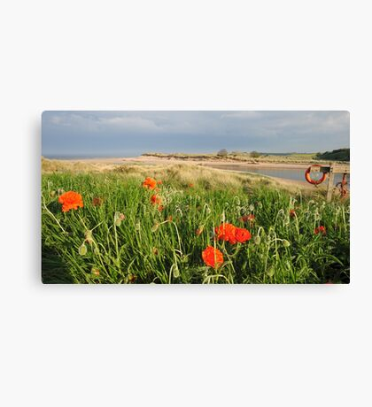Alnmouth, Northumberland Canvas Print