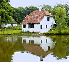 House by the pond by hans p olsen