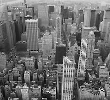 To the north, Empire State Building, NYC by Rachael Mullins