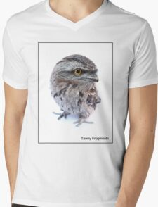 Tawny Frogmouth Mens V-Neck T-Shirt