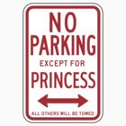 No Parking Except For Princess Sign by SignShop