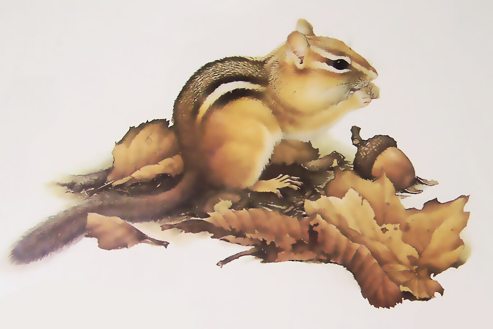 Eastern Chipmunk by Terry Bailey
