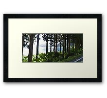 Tree Screen Framed Print