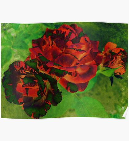 Colourful Textured Roses Poster