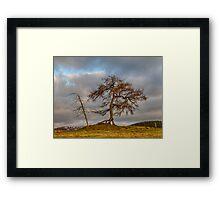 KILDRUMMY - THE ENTS Framed Print