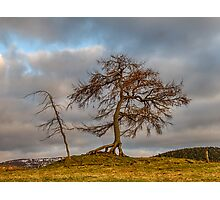KILDRUMMY - THE ENTS Photographic Print