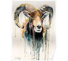 Ram Poster