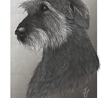 Artemis - Irish Wolfhound by SirInkman