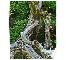 Heron Driftwood Poster