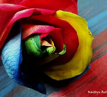 Painted Rose by Kaitlyn Bell