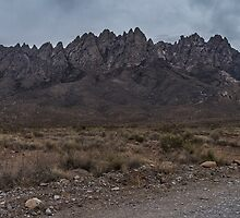 Organ Mountains - New Mexico II by Richard Thelen