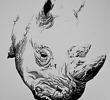 White Rhino Portrait by Paul Fearn