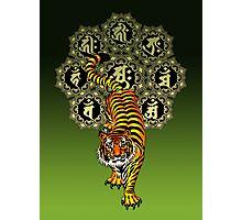 Tiger Bonji Photographic Print