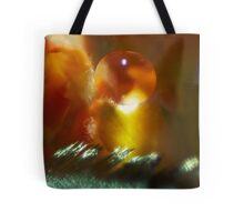 Truth Revealed Tote Bag