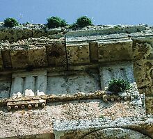 Top corner of wall temple Segesta Sicily 198403250053  by Fred Mitchell
