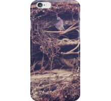 Mansion iPhone Case/Skin
