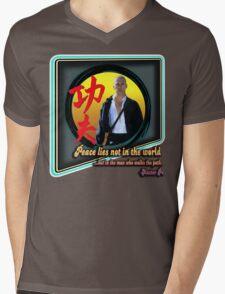 Kung Fu Mens V-Neck T-Shirt