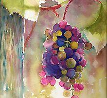 Grapes by Tania Richard