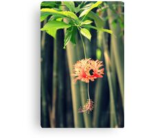 Jungle Beauty Canvas Print