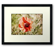 Shivers in Red Framed Print