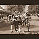 Flashing Lane- Appleby Horse Fair by Lou Wilson
