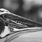 Flying Lady - 1946-48 DeSoto By Chrysler by Bryan Freeman