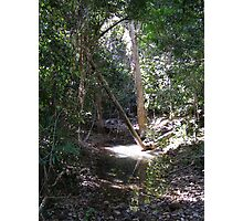 Pretty creek! Cape Hillsborough N.Park, East Coast Queensland. Photographic Print