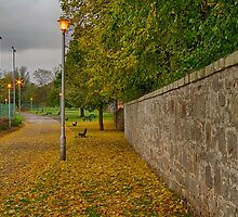 ELGIN - COOPER PARK IN AUTUMN by JASPERIMAGE