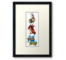 The evolved starters (johto) Framed Print