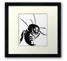 The Hornet Framed Print