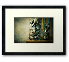 « Cabinet of curiosities » Framed Print