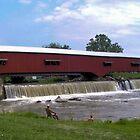 Bridgeton Covered Bridge and Waterfall by Marie Sharp