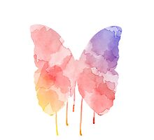 Warm Watercolor Butterfly  by ASoftNarwhal
