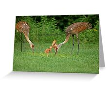 A Beautiful Family ~ Greeting Card